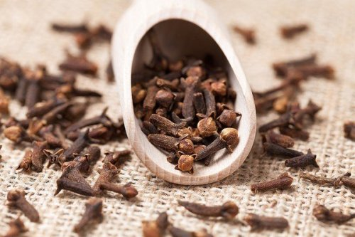 Clove Oil While Pregnant | Styles At Life
