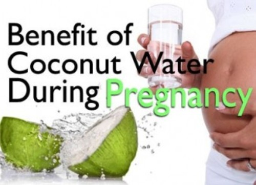 Coconut Water During Pregnancy 1