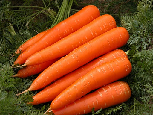 Carrots Foods That Increase Breast Milk
