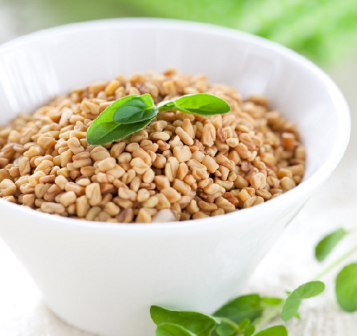 Breast Milk Increasing Foods Fenugreek Seeds