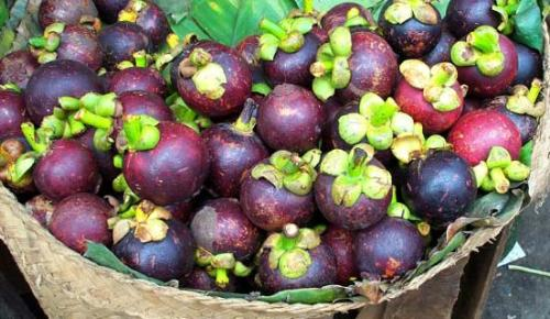 Mangosteen During Pregnancy 2