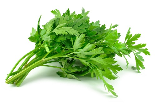 parsley during pregnancy
