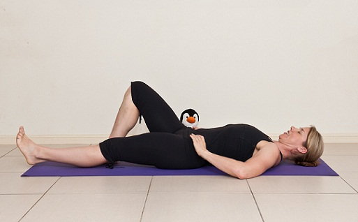 abdominal exercises during pregnancy 6