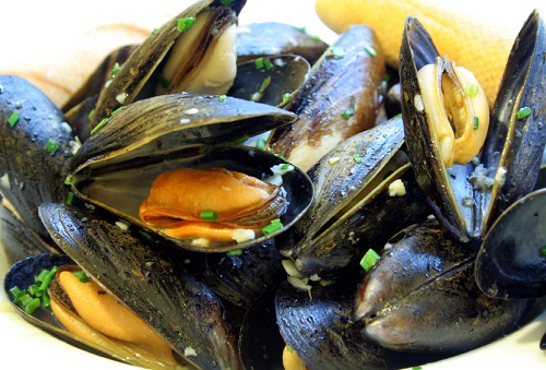 mussels when pregnant