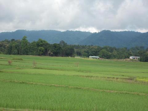 Top 9 Honeymoon Places In Tripura - Jampui Hills