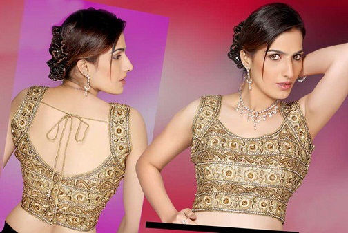 Blouse back neck designs for pattu sarees13