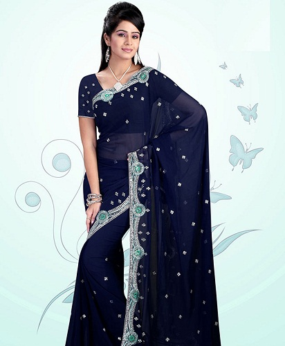 Blue Sarees-Deep Blue Masterpiece saree 3