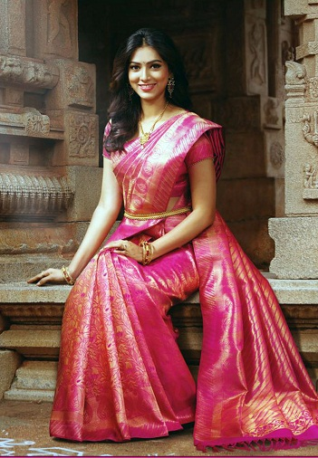 Designer blouse for Pattu sarees (edited)3