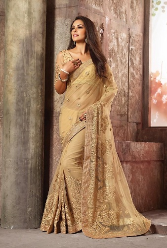Golden Net Saree 4