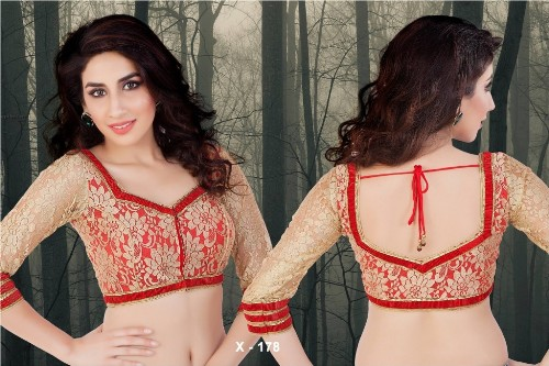 Saree Blouse Designs-Lace Blouse 15