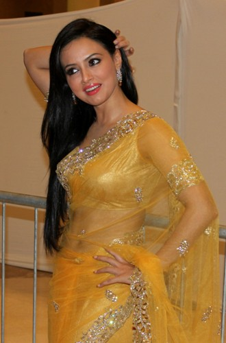 Yellow Sarees-Beautiful Transparent Yellow Saree 10