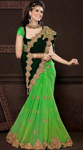 11. Green velvet net butterfly sari