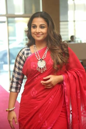 Handloom Sarees-Red Handloom Saree For Indian Women 11