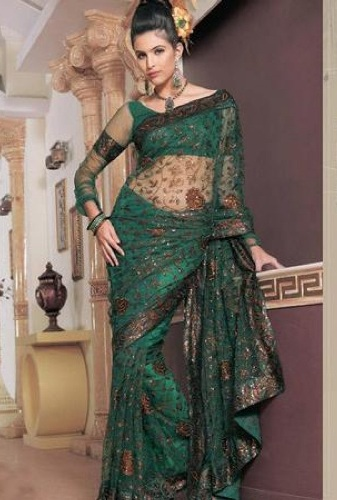 Sheer Sleeved Blouse Design For Net Saree