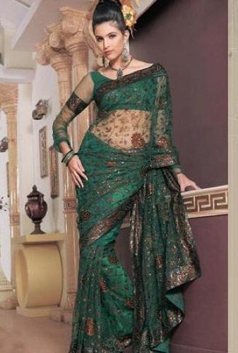 Sheer Sleeved Blouse Design For Net Saree