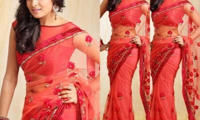 net-saree-blouse-neck-designs-boat-neck-blouse
