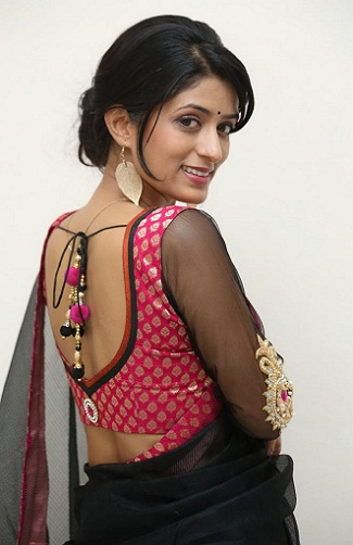 net-saree-blouse-neck-designs
