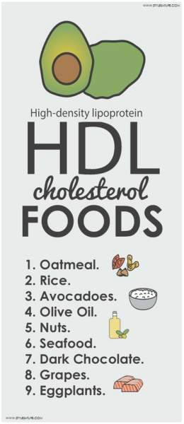 HDL Cholesterol Foods