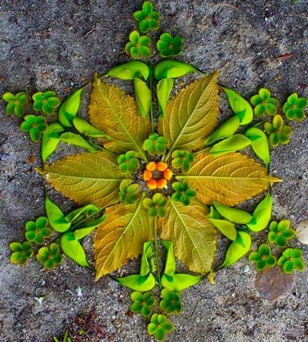 75 simple and easy rangoli designs with pictures styles