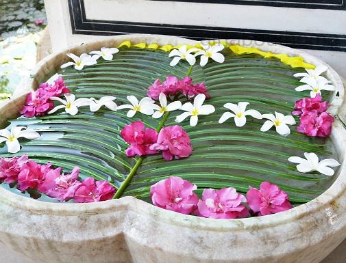 Palm Leaf with Flowers Rangoli Design