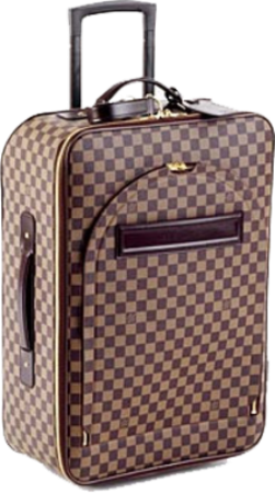 Designer Luggage Bag -1