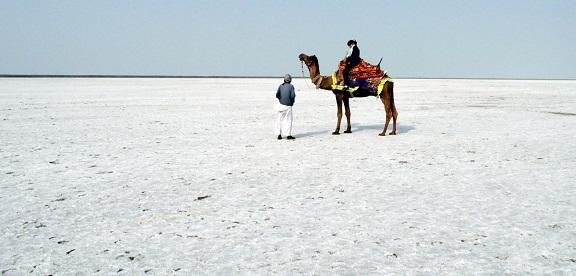 White Sand Beaches Gujarat