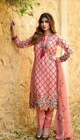 Cut work Punjabi Salwar Suit