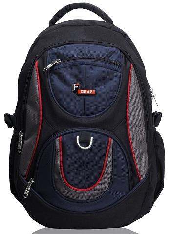 Polyster 29 Litres School Bag -9