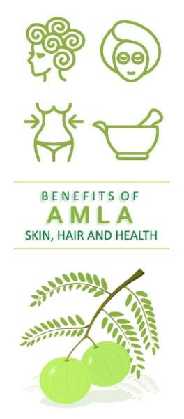 Amla (Gooseberries) health benefits
