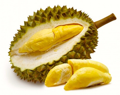 Durian During Pregnancy -2