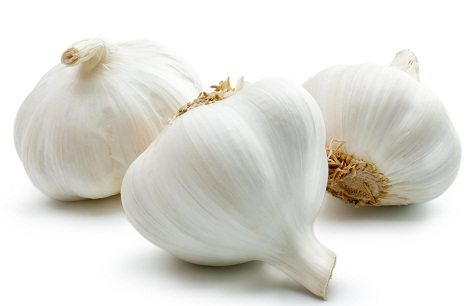 Garlic 8
