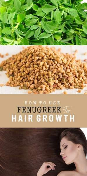 fenugreek for hair growth