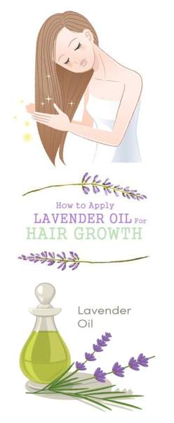lavender oil for hairgrowth