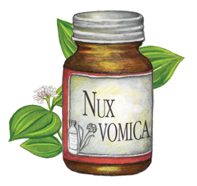Nux Vomica (Homeopathic Medicine For Headaches)