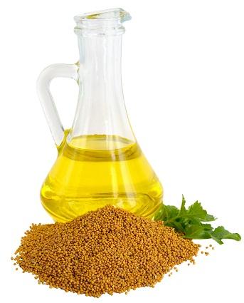 cholesterol in mustard oil