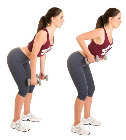 Back Fat Workout Dumbbell Rows