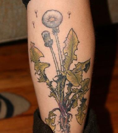Wild dandelion tattoo