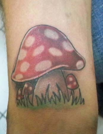 Incredible Mushroom Tattoo Design