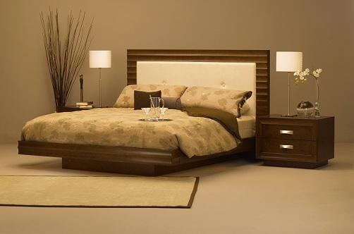 Stylish Designer Beds