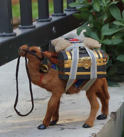 Enchanting Garden Camel Crafts
