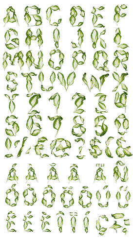 Leaf Alphabets Nature Craft