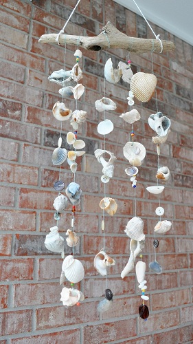 Sea Shells Nature Crafts
