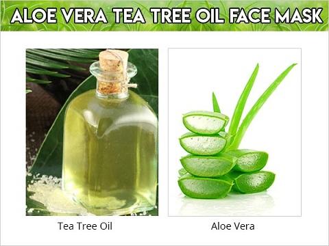 Aloe Vera and Tea Tree Oil Face Mask