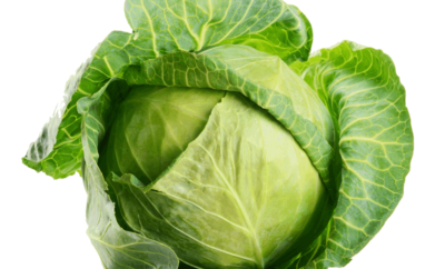 Benefits of Cabbage During Pregnancy