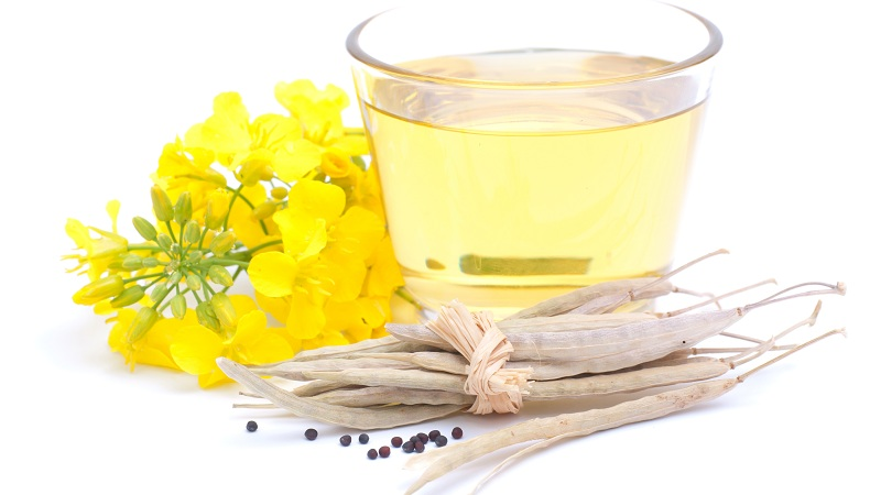 Canola Oil benefits
