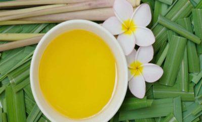Citronella Oil benefits