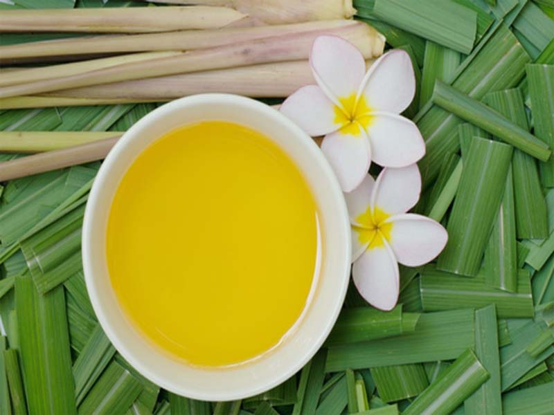 Citronella Oil benefits