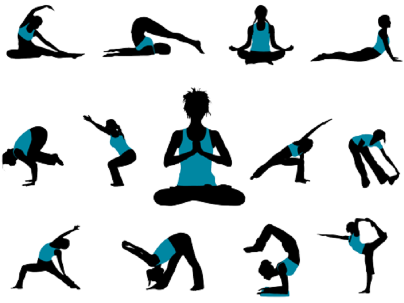 Varieties of Hatha yoga