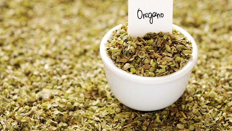 oregano uses