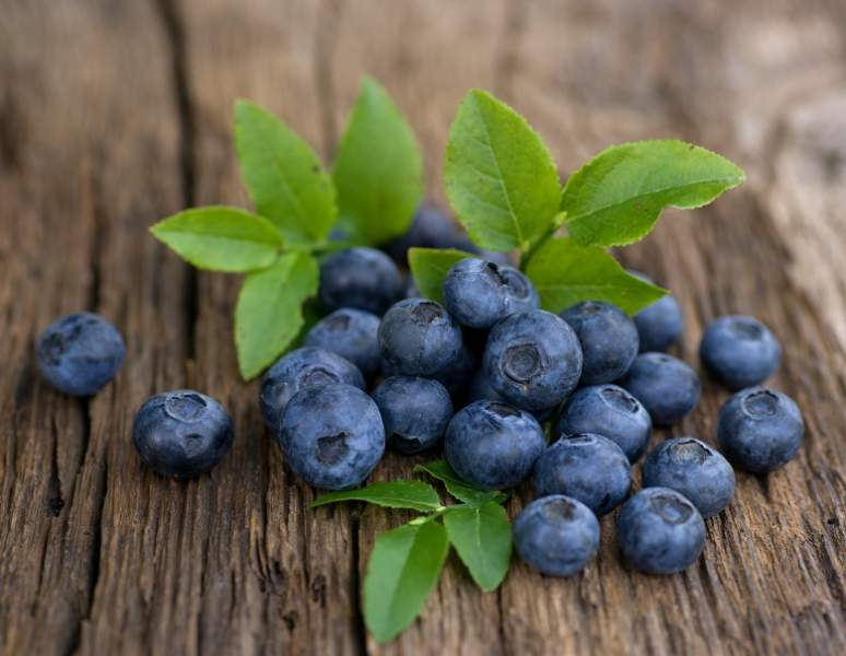 Bilberry Benefits for Skin, Hair and Health